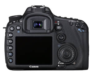Guide to Cameras and Gear